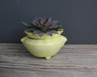 Ceramic Pot Planter for Macrame Hanging