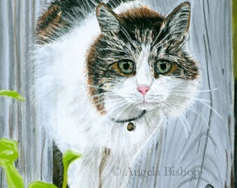 Cat Painting Print, A Visitor, Cat Print, Art Print, Reproduction, Cat, Pet, 8 x 10, Realism, Giclee, Pastel, Painting, Fine Art