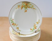 Vintage Bread Plate • Orange Snowball Flower • Taylor Smith and Taylor China • Set of 8