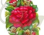 Peony Vintage Digital Flower and Leaves Printable Clip Art Instant Download Botanical Graphic