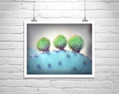 Cactus, Fine Art Photography, Blue, Purple, Prickly Pear, Arizona, Desert Art, Violet, Nature Photography, Wall Picture, Cacti