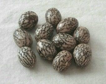 15 x 11 mm Oval Betel Nut Beads - Set of 12