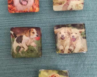 Set of Five Puppy Magnets
