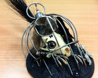 Caged Haunted Critter Head Wear. Fake Creature Skull Fascinator Hat. Faux Taxidermy Hat. Halloween head wear