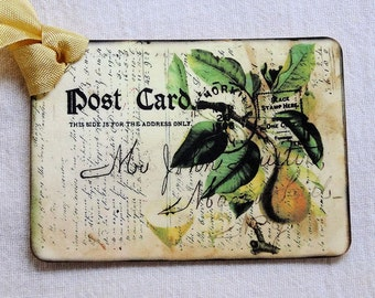 Vintage Style Yellow Pear Postcard Tags #159