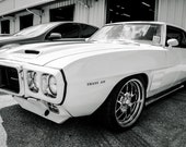 1969 Pontiac Firebird Trans Am Car Photography, Automotive, Auto Dealer, Muscle, Sports Car, Mechanic, Boys Room, Garage, Dealership Art