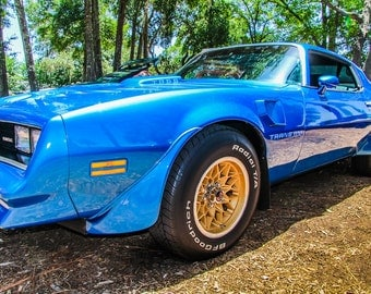 1977 Pontiac Firebird Trans Am Car Photography, Automotive, Auto Dealer, Muscle, Sports Car, Mechanic, Boys Room, Garage, Dealership Art
