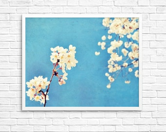 BUY 2 GET 1 FREE Flower Photography, Nature Photo, Cherry Blossoms, Spring, Blue, White, Romantic, Wall Decor, Happy -Pretty in the Sky