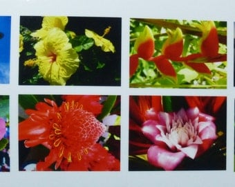 Hawaii photo cards, box of 8 (5 x 7 cards).