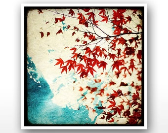 """Deluxe Signed 8""""x8"""" Print - Automne Rouge"""