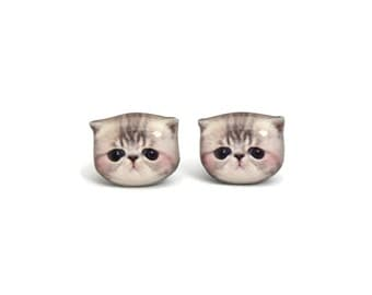 Cute Newborn Grey and white Exotic Kitten Cat Stud Earrings - A025ER-C44  Made To Order