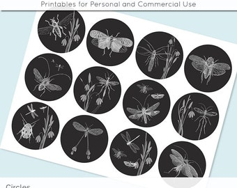Black and White Vintage Bugs 2.5 Inch and 2in Circle Digital Collage Sheet Download Printable Images for Gift Tags Cards Scrapbooking JPG