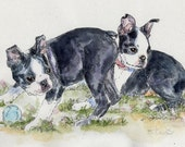 BOSTON TERRIER Pair Original Watercolor on ink print 11x14 Matted Ready to Frame