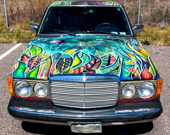 Wild Custom Art on Cars Trucks & RVs by Mizu -  Denver - Boulder - Fort Collins - Loveland - Colorado