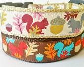Squirrel Bait - Dog Collar / Handmade / Adjustable / Pet Accessories / Gift Idea / Pet Lover