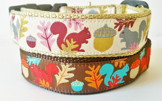 Squirrel Bait - Dog Collar / Handmade / Adjustable / Pet Accessories / Gift Idea / Pet Lover