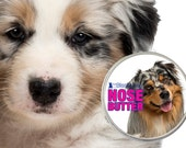 Australian Shepherd NOSE BUTTER® for Dry Cracked Dog Noses 1 oz Tin with Choice of Red or Blue Merle, Tricolor Aussies on Label in Gift Bag