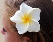 Large Frangipani Hair Clip, 3 3/4 Inch,   Hair Flower,  Hawaii  Hair Clip, Beach Wedding, Hair Accessory