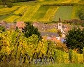 France Photography, Alsace Vineyard Photo Decor Wall Art Village Landscape Home Decor Fine Art Print fra21