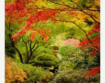 SALE - Ships Aug 27 - Autumn Photography Fall Colors Photo Red Maple Japanese Shrine Garden Photograph Autumn Colors Red Leaves nat92