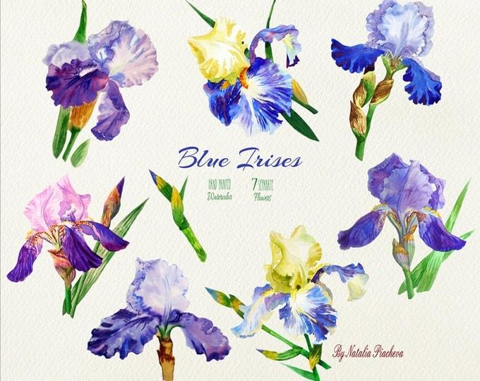 Blue Irises. Watercolor clip art, clipart, botanical, blue, flower, bouquet, leaf, iris, garden, wedding