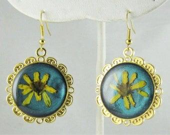 Sunflower on Teal, Real Flower Earrings Pressed Flower Jewelry, Resin (1688)