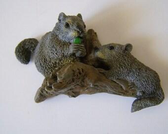 Squirrel Magnet gray squirrels