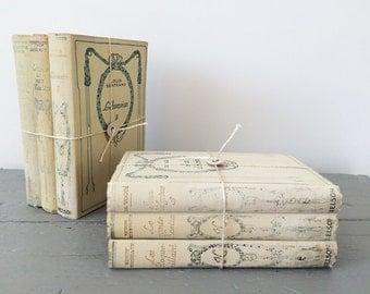 Vintage français classiques livre bundle