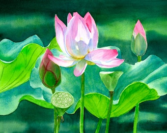 Pink Lotus Blossom,Watercolor Painting,Original Watercolor,water lily,art, tropical flowers, floral watercolor, pink flowers 10 x 15
