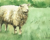 Sheep in a Meadow Original Watercolor 4 x 6