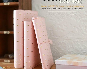 PREORDER Blush & Gold Dots Webster's Pages Color Crush A5 Planner Kit • Free Washi Tape with this order