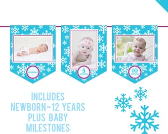 INSTANT DOWNLOAD Snowflake Party - DIY printable photo banner kit - Includes Newborn through 12 Years, Plus Baby Milestones