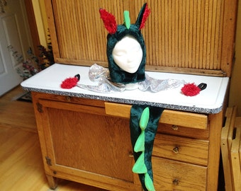 Dragon Costume, Hat and Tail, Dragon Hat, Dragon Tail