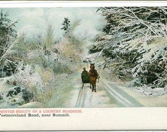 Horse Sleigh Country Roadside Westmoreland Road Summit New Hampshire 1910s postcard