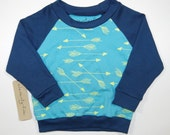 Organic Cotton Kids Arrow Raglan | Arrows | Blue & Green | Toddler Shirt | Unisex Babies Shirt | Screen Printed | Long Sleeve | Hipster
