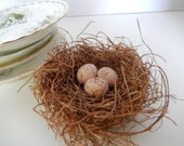 "CUSTOM ORDER for ""Feray"" Shabby Rustic Handmade Bird Nest w/off White Speckled Eggs Woodland Decor OOAK by AMarigoldLife"