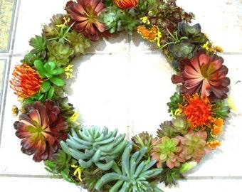 Faux Succulent Front Door Wreath, Artificial Succulent Door Wreath, Year Round Succulent Wreath