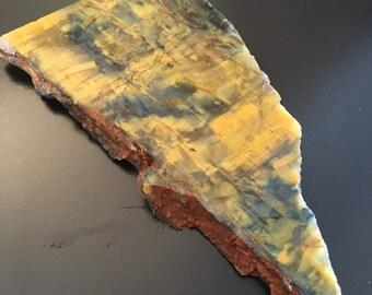 Neolite/Pietersite Slab