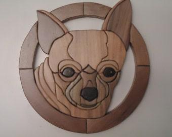 Dog Chihauhua