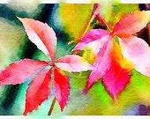 Printable Art, Instant Download Printable Art, DIY Print At Home, Instant Download, Art Print, Autumn leaves