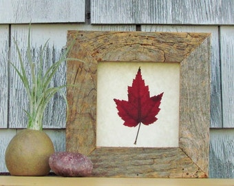 Canadian Red Maple Leaf in Handmade Reclaimed Barnboard Wood and Upcycled Glass Frame, Fall Autumn Decor