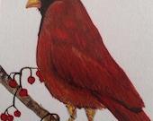 Red Cardinal Bird Waterco...