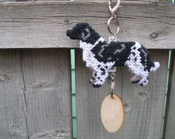 Stabyhoun dog crate tag hang anywhere, Stabijhoun, Friese Stabij, Magnet Option