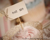 10 x Custom Party Picks  - cream with thin twine bows