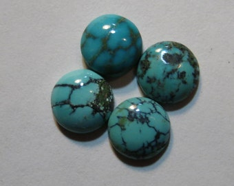 Natural Nevada Turquoise cabs  ....  4 pieces ........ approx 8 mm   ..... B2995