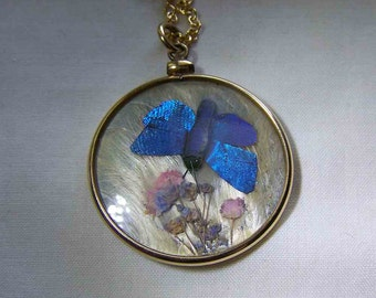 Antique Iridescent Butterfly Wing Double Sided Glass GF Locket