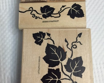 Stampin' Up retired rubber stamp set. Clearance. Gently used, definitely decorative grapes & vines.