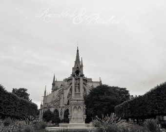 Paris- Notre Dame Cathedral Flying Buttresses- Fine Art Photography