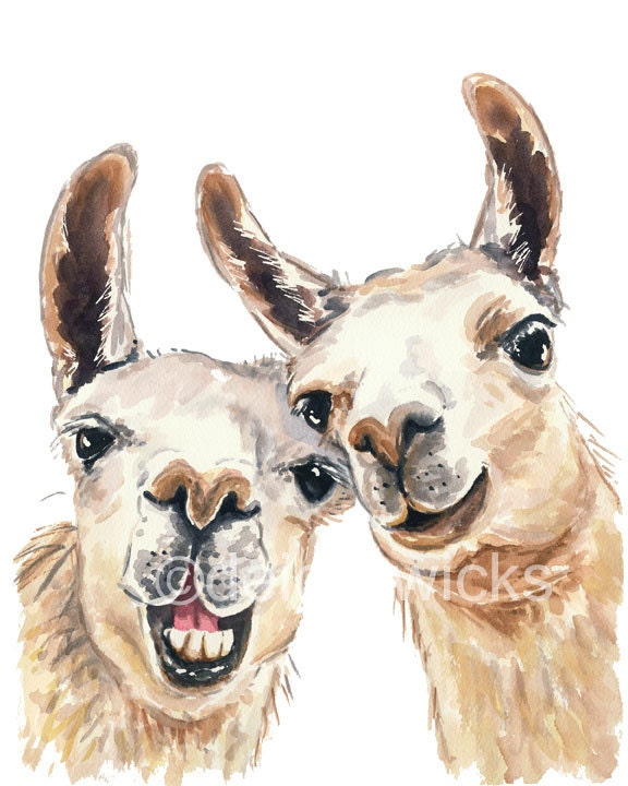 Impertinent image with llama printable