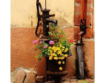 Fine Art Color Travel Photography of Pump and Flowers in Alsace France